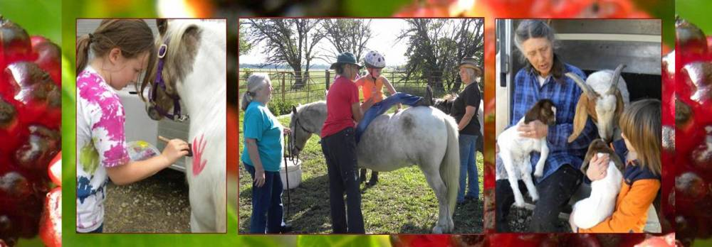 TOP KANSAS SUMMER CAMP: Engler  Farm Horsemanship Day Camps is a Top Summer Camp located in Marion Kansas offering many fun and enriching camp programs. Engler  Farm Horsemanship Day Camps also offers CIT/LIT and/or Teen Leadership Opportunities, too.