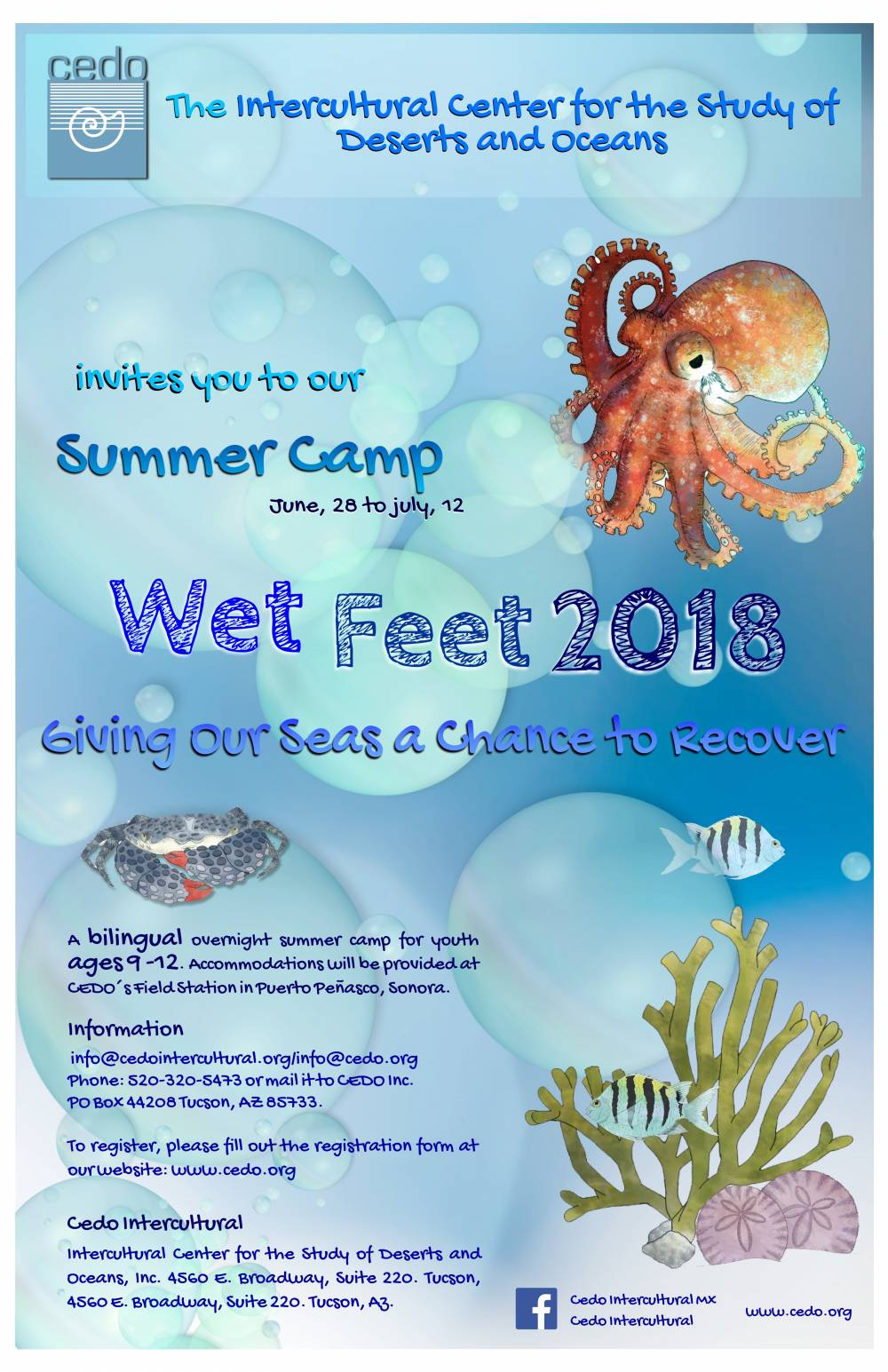 TOP ARIZONA SUMMER CAMP: Wet Feet Ocean Camp is a Top Summer Camp located in Tucson Arizona offering many fun and enriching camp programs.