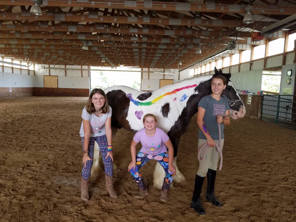 TOP KANSAS SUMMER CAMP: Hearts & Hooves Summer Camp is a Top Summer Camp located in Bucyrus Kansas offering many fun and enriching camp programs.